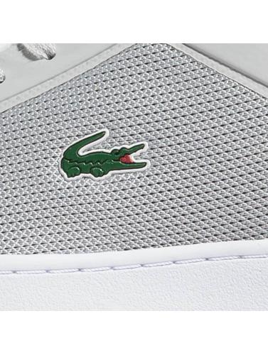 Angebote Zum Verkauf Lacoste Herren Sneaker Endliner 217 in grau Starttermin Für Verkauf Freies Verschiffen-Spielraum Store XsZXw