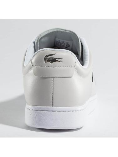 Lacoste Herren Sneaker Carnaby Evo 317 10 SPM in grau