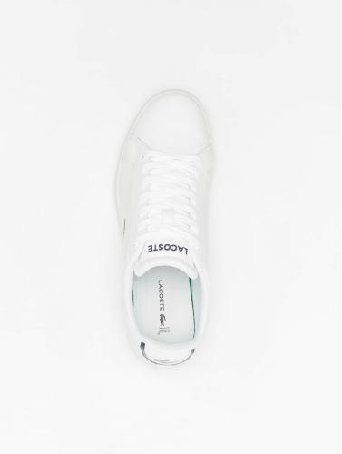 Lacoste Herren Sneaker Carnaby Evo BL 1 in weiß