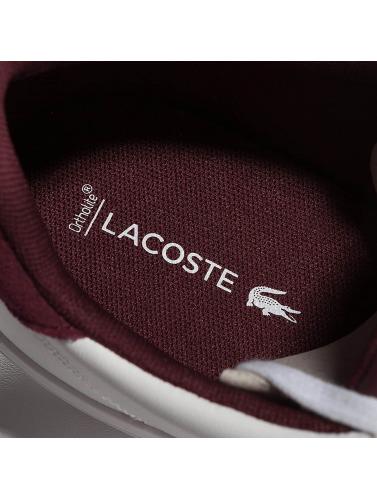 Lacoste Men Sneaker Fairlead 317 Cam In White