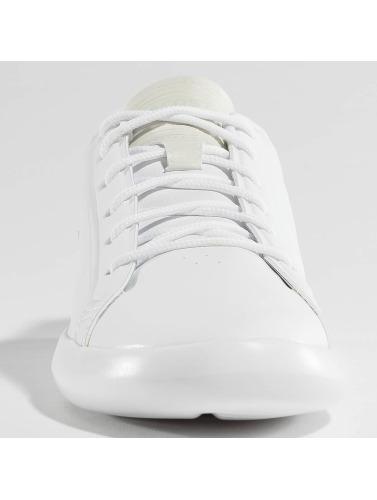 Lacoste Herren Sneaker Avantor in weiß