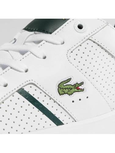Lacoste Herren Sneaker Novas CT in weiß
