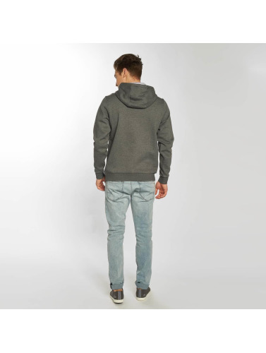 Lacoste Hombres Sudadera Basic in gris