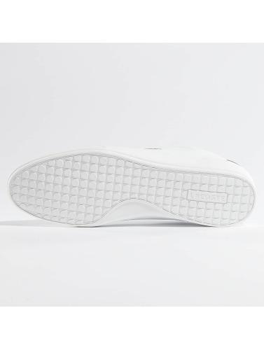 Lacoste Hombres Zapatillas de deporte Misano Sport 317 CAM in blanco