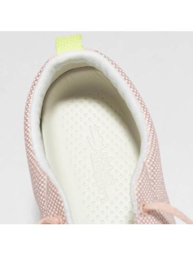 Lacoste Mujeres Zapatillas de deporte Avenir in rosa