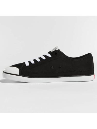 Levi's® Herren Sneaker Venice L in schwarz