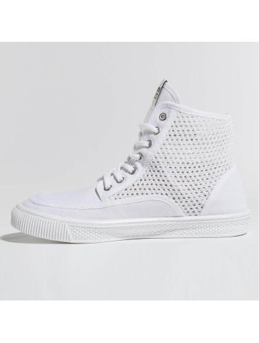 Levi's® Damen Sneaker Petaluma II in weiß
