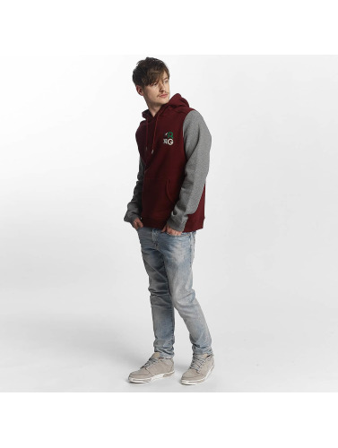 LRG Herren Hoody Research Collection in rot