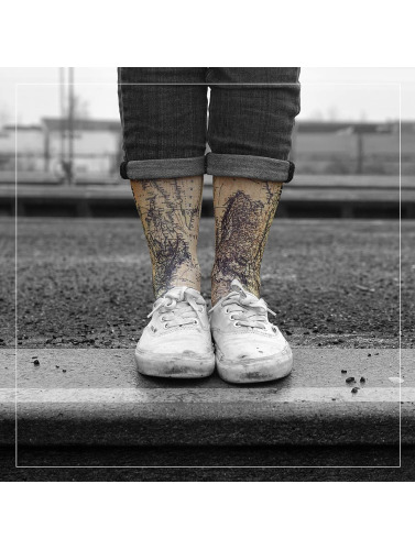 LUF SOX Calcetines World in colorido