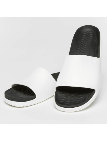 Native Chanclas / Sandalias Spencer LX in blanco