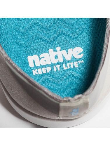 Native Sneaker Apollo Moc in grau