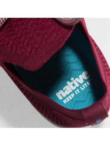 Native Sneaker AP Mercury LiteKnit in rot
