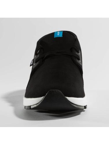 Native Herren Sneaker AP Chukka Hydro in schwarz