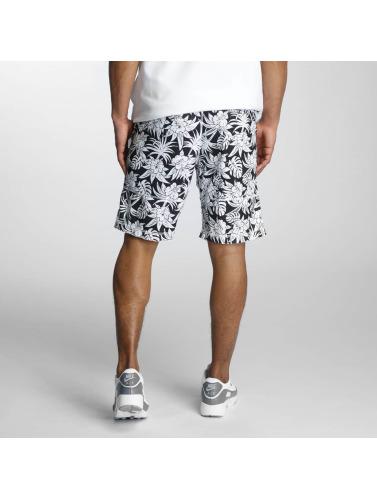 Nike SB Herren Shorts Dry in schwarz