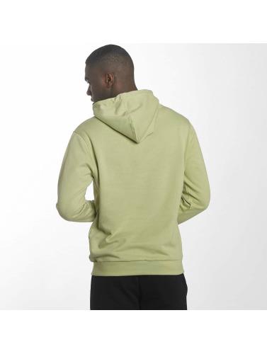 Pelle Pelle Hombres Sudadera Back 2 Basics in verde