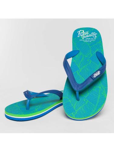 Petrol Industries Hombres Chanclas / Sandalias Summer in azul