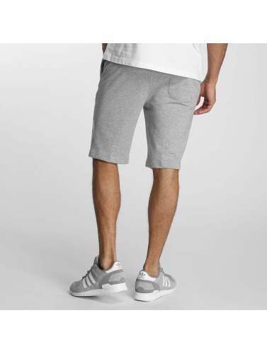 Pusher Apparel Herren Shorts 219 Cut in grau