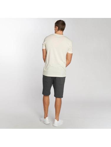 Ragwear Hombres Camiseta Hake Organic in blanco