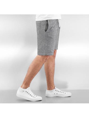 Reell Jeans Herren Shorts Sweat Shorts in grau