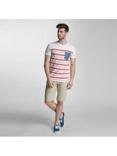 SHINE Original Herren T-Shirt Striped in rosa