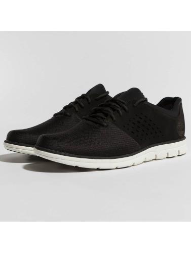 Timberland Herren Sneaker Bradstreet F/L Oxford in schwarz Manchester Großer Verkauf 2OrGD20C