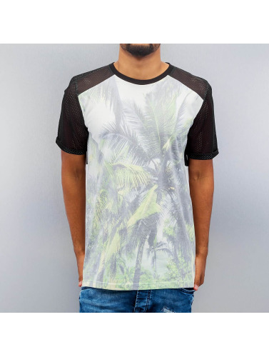 VSCT Clubwear Hombres Camiseta Palm Mesh in colorido