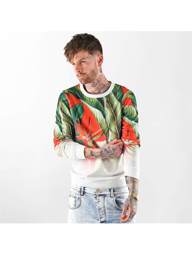 VSCT Clubwear Herren Pullover Tropic Graded in bunt