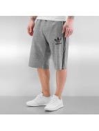 adidas Šortky Adicolor Drop Baggy šedá