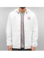 adidas Демисезонная куртка FC Bayern München белый
