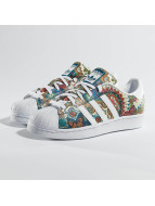 adidas Baskets Adidas Superstar multicolore