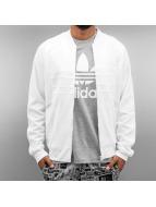 adidas Cardigan Superstar blanc
