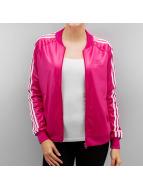 adidas Collegetakit Superstar vaaleanpunainen