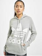 adidas Hoodie Trefoil grå