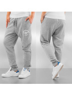 adidas Jogging Lowcrotch Cu gris