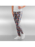 adidas Leggings Cirandeira multicolore
