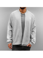 adidas Lightweight Jacket Superstar Premium gray