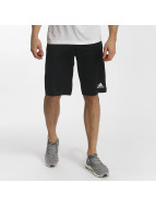 adidas Performance shorts Tango Future zwart