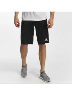 adidas Shorts Tango Future schwarz