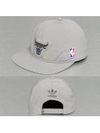 adidas Snapback Cap NBA Bulls grau