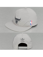 adidas Snapback Caps NBA Bulls šedá