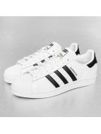 adidas Sneaker Superstar Nigo Bear weiß