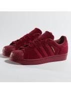 Adidas Superstar Sneakers Core Burgundy/Core Burgundy/Core Burgundy