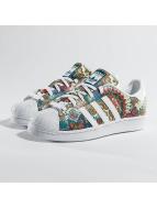 adidas Sneakers Adidas Superstar mangefarvet