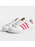 adidas Sneakers Superstar Founda vit
