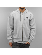 adidas Zip Hoodie Brand серый