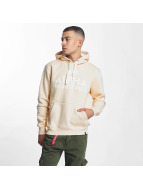 Alpha Industries Hoody Foam Print beige