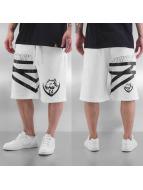 Amstaff Shorts Kavic hvit