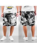 Amstaff shorts Degas zwart