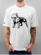 Amstaff T-Shirty Logo bialy