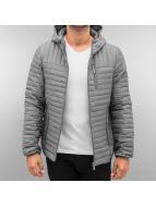 Authentic Style Kış ceketleri Charles gri
